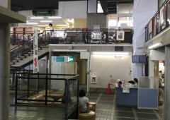 ◆佐倉市役所へ